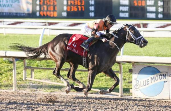 What Will the Payout Be if Girvin Wins 2017 Kentucky Derby