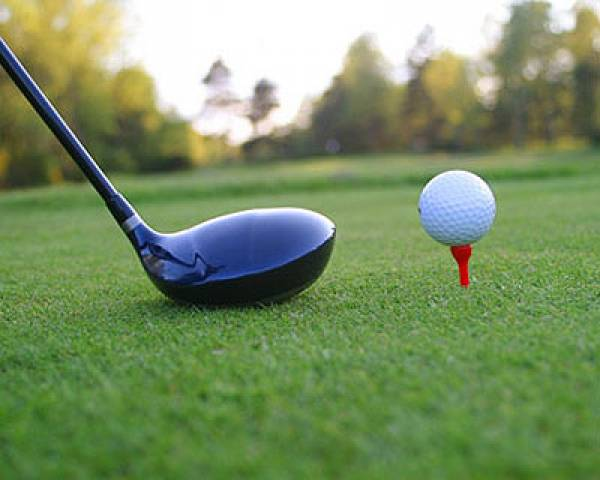 Betting on the US Open Championship - 2011