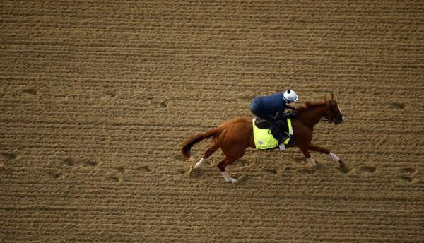 Good Magic Payout Odds - Preakness Stakes