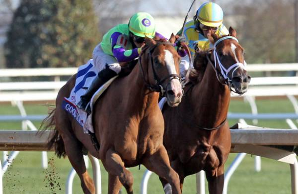 What Are The Payout Odds For Good Magic To Win The Kentucky Derby