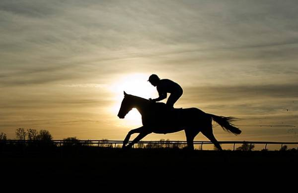 Where Can I Bet the Kentucky Derby Online From Maine