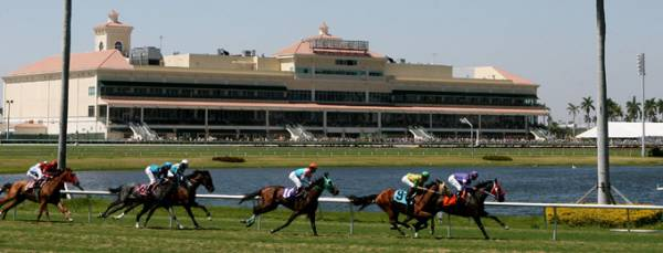 Bookies to Flock to Gulfstream Park This Kentucky Derby: Betting Seminar Unveiled
