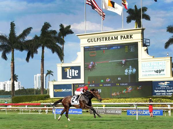 Fasig-Tipton Gulfstream Oaks Betting Odds 2020