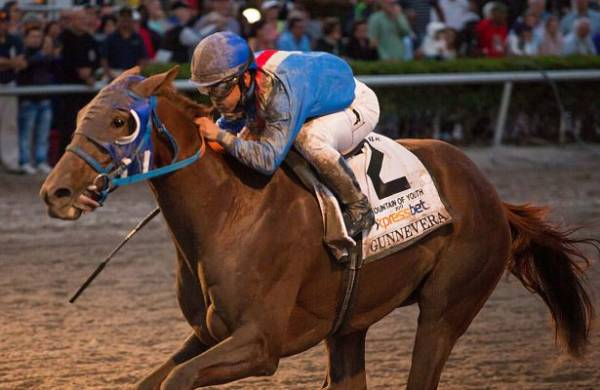 Gunnevera Odds to Win the 2017 Breeders Cup Classic
