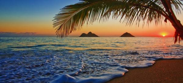 Where Can I Play Texas Hold'em Online From Hawaii?