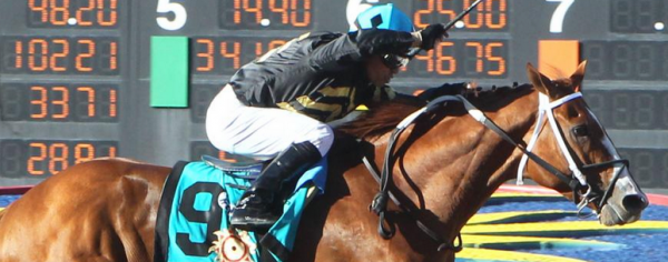 What Will the Payout Be If Hence Wins the Preakness Stakes?
