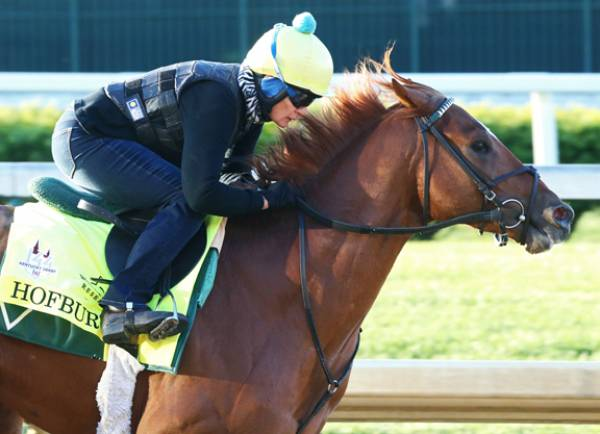 Odds on Hofburg Winning This Year's Kentucky Derby