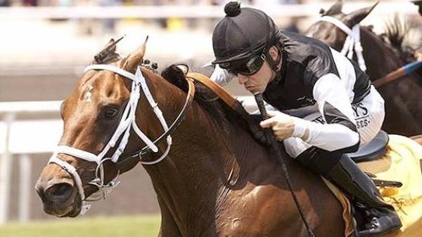 Ruidoso Downs Set to Resume May 21, Santa Anita Still Exploring Plan