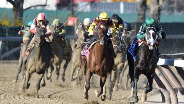 Why Hollywood Handsome Can Win the Belmont Stakes – Pros and Cons - Latest Odds
