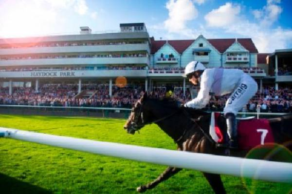 Lowton Maiden Stakes (Plus 10) 2017 Betting Odds - Haydock