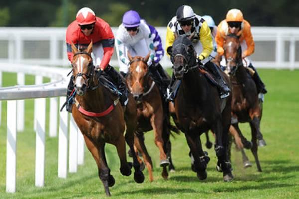 Horse racing and gambling torgue slot machine borderlands 2