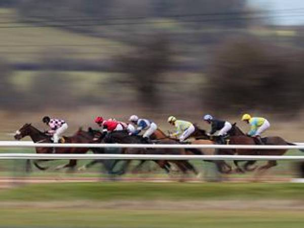 Watch Horse Racing Online Live