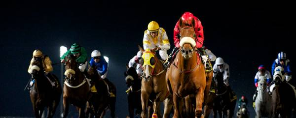 Horse Racing PPH