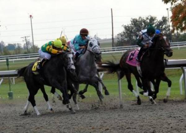 Autumn Meeting at Keeneland 2011 Odds