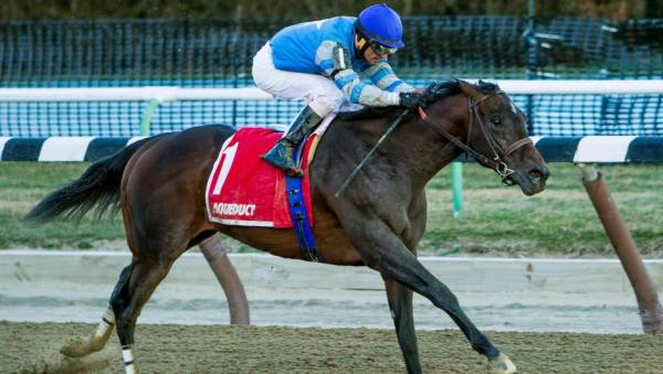 J Boys Echo Odds to Win the 2017 Kentucky Derby
