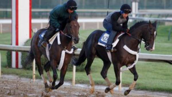 Jackson Bend Preakness Stakes Odds