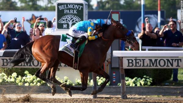 How Much Would Justify Pay Out on a Bet to Win the Belmont Stakes?