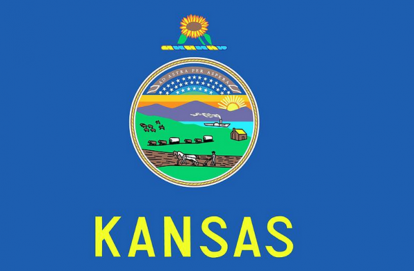 Where Can I Bet the Super Bowl Online From Kansas?