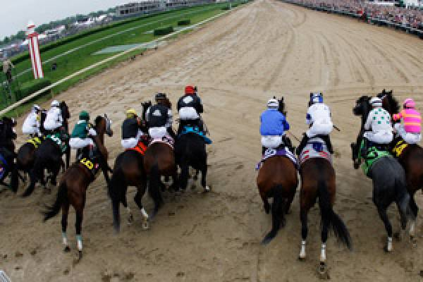Betting on Horses Online