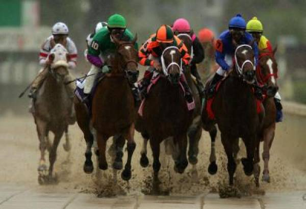 2011 Preakness Stakes Contenders