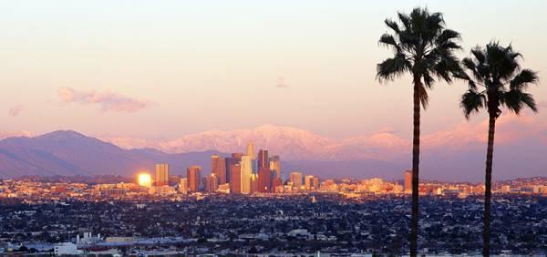 Own an Online Sportsbook in the LA Area
