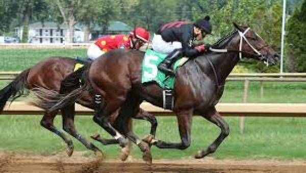 2017 Belmont Stakes Mudders Include Lookin At Lee With Slight Chance of Rain