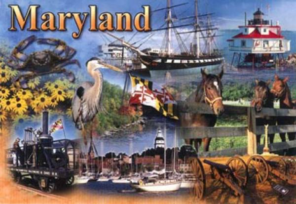 Where Can I Bet the Breeders Cup Online From Maryland?