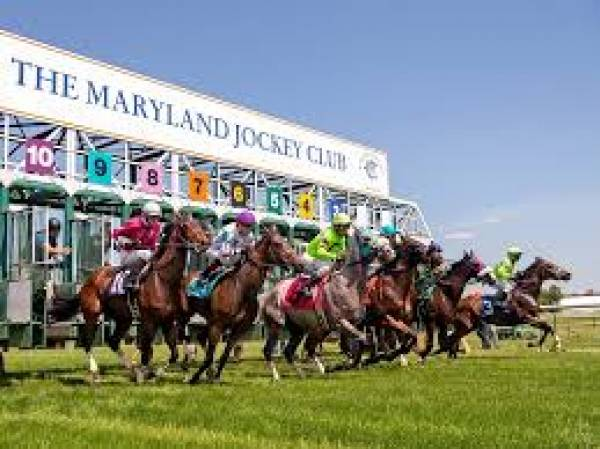 Odds to Win the 2019 Maryland Million