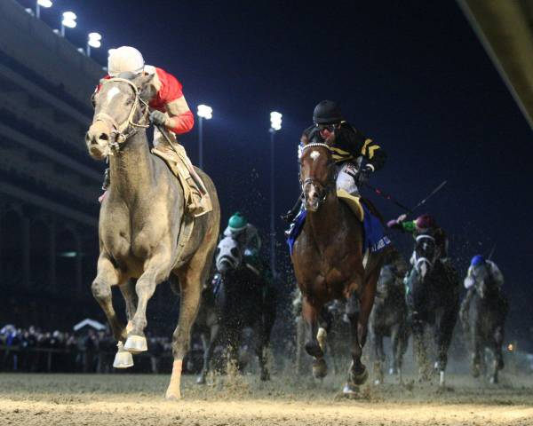 McCraken Early Odds to Win the 2017 Kentucky Derby at 9-1