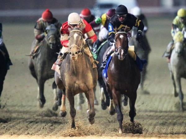 2017 Kentucky Derby Mudder: McCraken