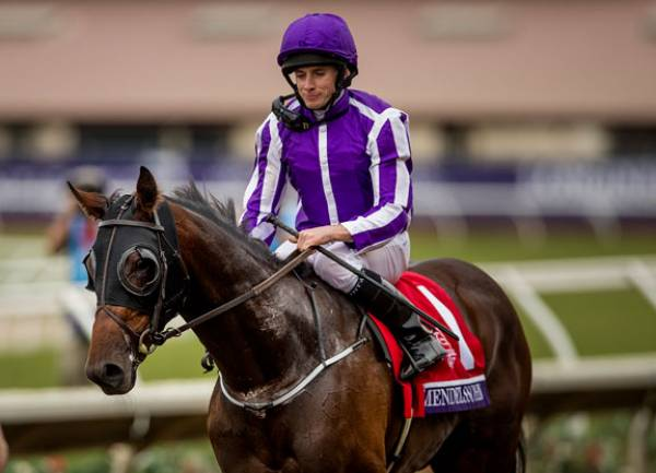 Mendelssohn Payout Odds - Will That UAE Derby Win Matter?