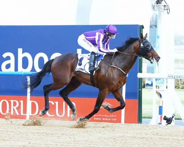 Mendelssohn Payout Odds 2018 Breeders Cup Classic