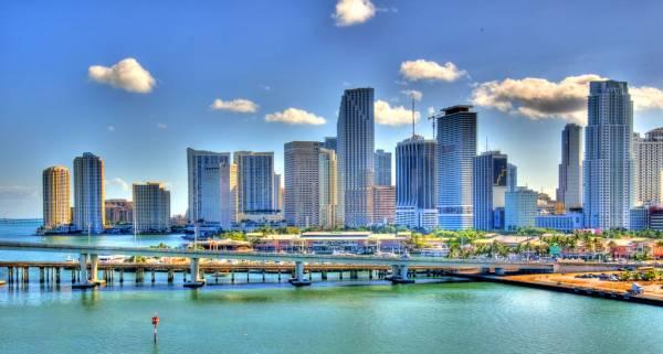 I Need a Local Bookie, Agent in Miami (PPH Software de Apuestas Deportivas en Línea)