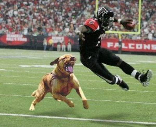 Michael Vick Signs With Philadelphia Eagles