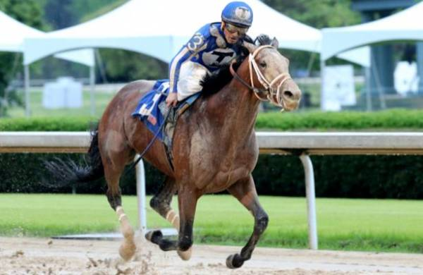 What Will the Payout Be on Mr. Big News to Win the Kentucky Derby?
