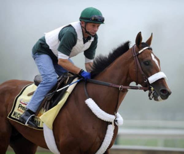 Mucho Macho Man Odds to Win Preakness Stakes
