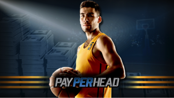 Top 6 NCAA Basketball Teams Online Bookies Should Prep For