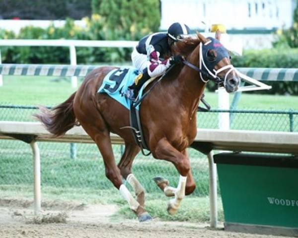 What Will the Payout Be on Necker Island to Win the Kentucky Derby?