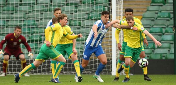Norwich v Brighton Tips, Betting Odds - Saturday 4 July