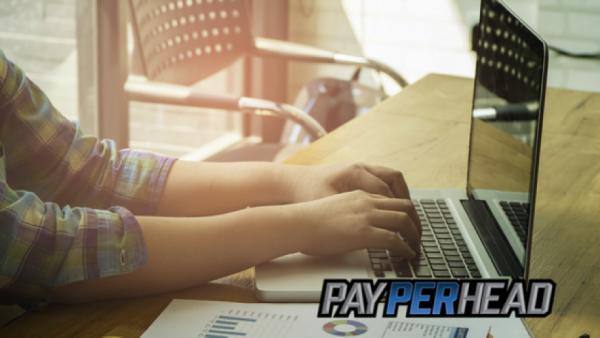 Pay Per Head Tips: 11 Time Saving Book Balancing Tips