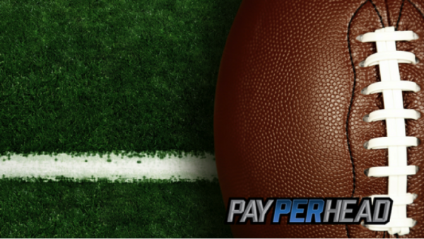 Pay Per Head Agents Need a Premium Software for 2017 NFL Betting Season