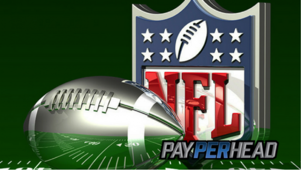 5 Price Per Head Tips to Make More Money With NFL Playoff Seasons