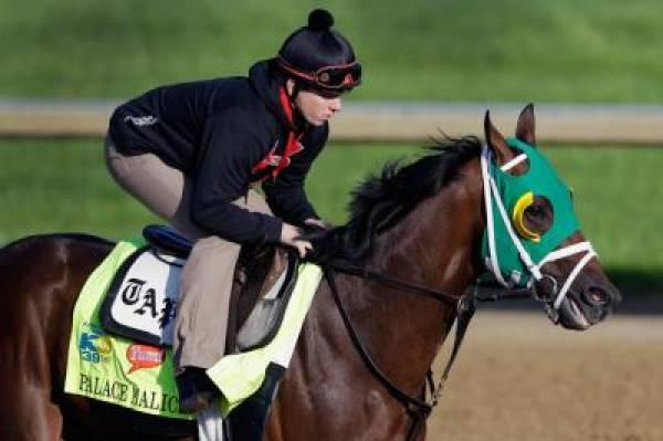 Jim Dandy Stakes 2013 Betting Odds