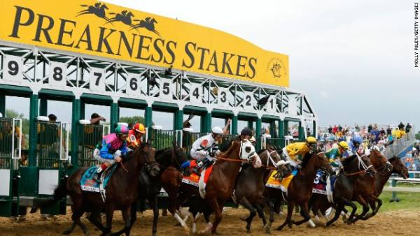 Betting The Preakness Stakes at Online Sportsbooks