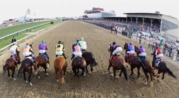 What Are the Current Odds of Cloud Computing Winning the Preakness Stakes