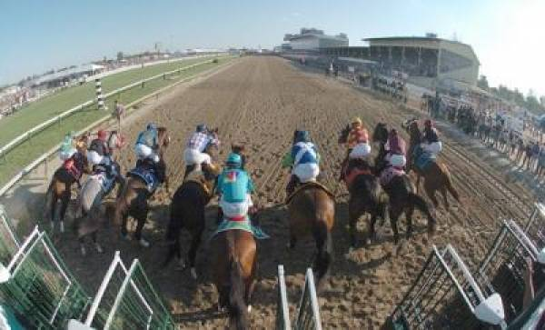 Betting the 2011 Preakness Stakes