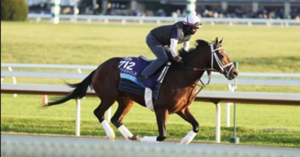 Rombauer Wins the 2021 Preakness Stakes