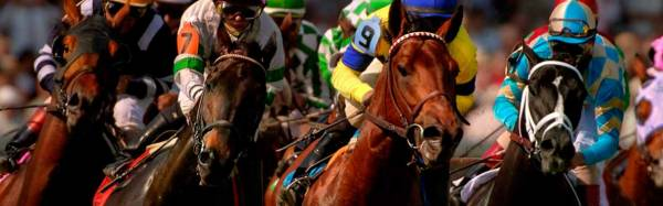 2017 San Felipe Stakes Betting Odds