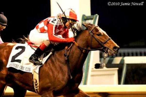 Santiva odds to win Belmont Stakes
