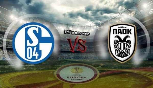 Schalke 04 v PAOK Saloniki Betting Preview, Tips, Latest Odds 22 February